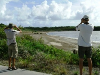 Birdwatching at Salines d'Orient