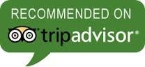 Seagrape Tours Reviews on Tripadvisor